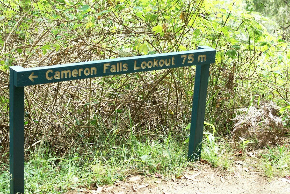 タンボリンマウンテンCameron-Falls-Lookout
